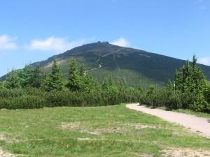Гора Снєжка літом