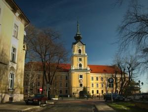 Жешувський замок