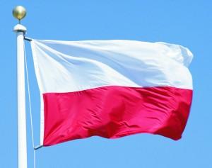 Польське походження