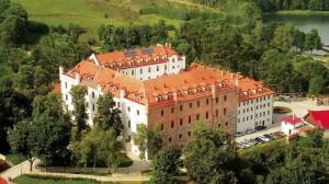 Замок Рин