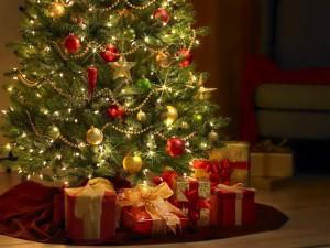 Святкування Різдва у Польщі
