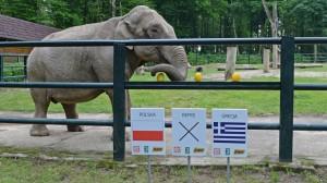 Краківський зоопарк