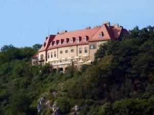 Пшегожальський замок