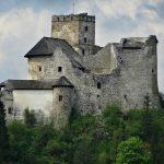 Замок Дунаєць