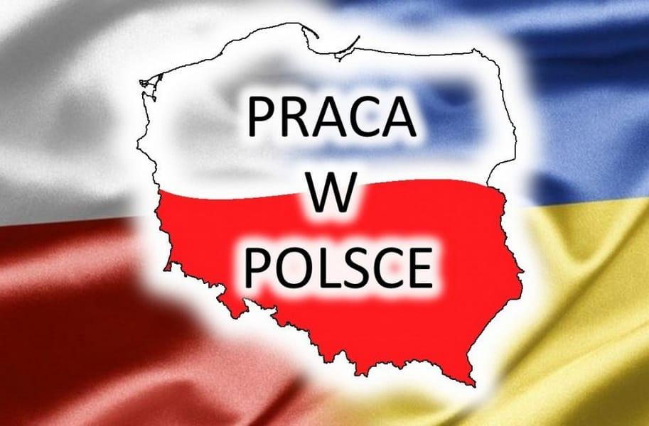 Хто може працювати в Польщі без дозволу на роботу  7c7ae2ffe250f